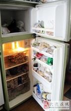 日本夏普电冰箱