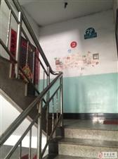 华阳学校教育局附近三室二厅二卫出租