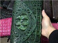 出售全新鳄鱼皮包包