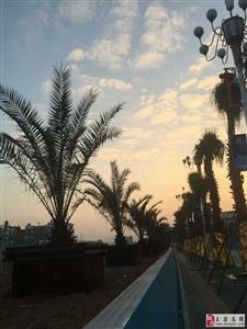 夕阳照在金水湾