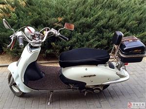 宗申牌大龟王踏板摩托车