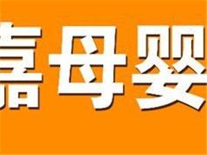北京家嘉家政肅寧招生辦