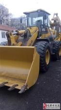 出售临工953,50铲车一台,提车干活,车况没挑,
