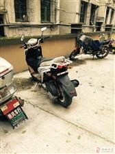 出售路虎踏板摩托车