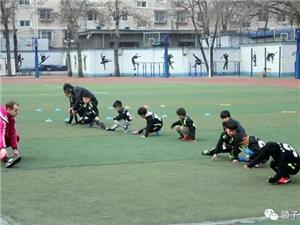 北京少儿足球培训 北京骄子足球培训班招生了