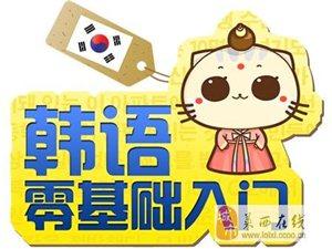 零基礎學韓語,日常用語、商務用語輕松學到手!