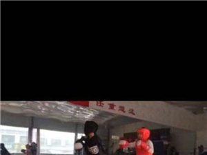 保定截拳道训练小组全城招募
