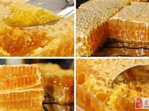 蜂蜜微商代理批发一件代发货