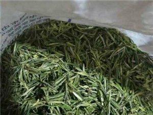 880+米的高山野生茶