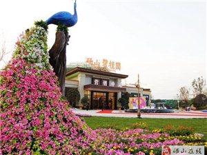 砀山碧桂园