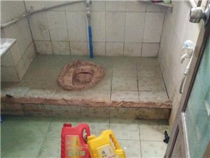 卫生间、厨房 阳台 天面防水免砸砖供奉我们可是带来了治漏