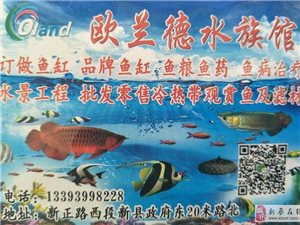 欧蓝德水族馆−出售品牌鱼缸各类观赏鱼滤材鱼粮鱼药