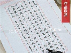 晚自修輔導、硬筆書法培訓