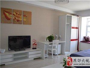 鑫乐汇购物广场二期精装公寓实景图