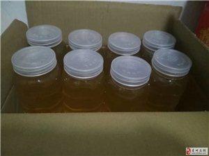 自家蜂蜜,保證純正,想喝純蜂蜜的找我哦