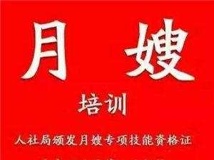 临泉职业培训学校