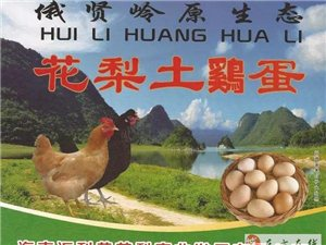 花梨土鸡蛋