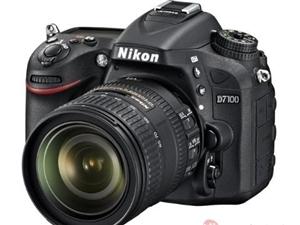高价收单反相机二手数码单反相机其他品牌相机单反镜头
