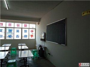 初中高中數學/物理/英語/全科輔導