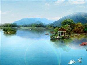 白鷺湖溫泉度假區為您服務