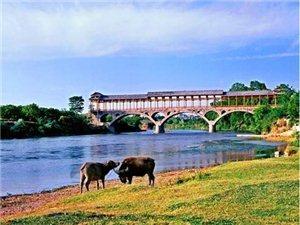 惠水縣為好花紅村旅游基礎設施建設募集資金