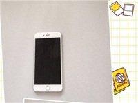 出售苹果6P 64G手机一台