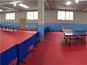 奧博乒乓球學校