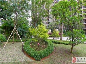 儋州市两房,三房出售,小区环境优美,交通便利