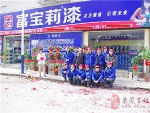 中国十大健康品牌富宝莉新型特种建筑涂料之外墙翻新宝
