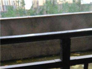 东湖丽景中庭毛坯三房,超大赠送