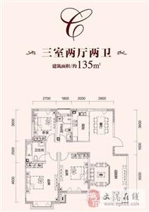 C户型  3室2厅2卫1厨  135.00�O