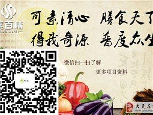 潍坊素百味自助快餐加盟    新型市场好项目