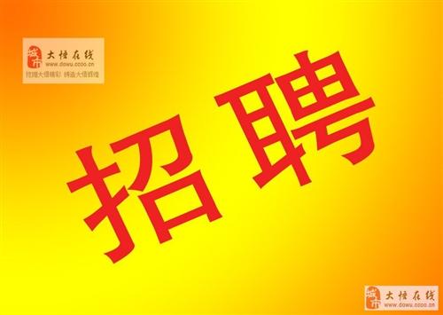 湖北省(大悟)老通城酒業