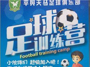 足球培訓班開始招生啦!