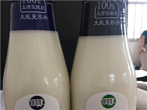 澳洲酸奶霍邱招商
