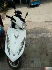 【出售】二手踏板摩托车出售,联系电话:15897979576