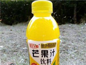 正宗生榨椰子奶芒果汁能量王等飲料
