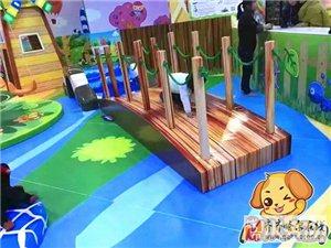 米卡迪兒童樂園品牌 有團隊有情懷有伙伴就等你!