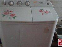 低價轉榮事達雙缸洗衣機