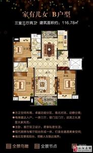 B户型/家有儿女(3室3厅2卫/116.78平方)