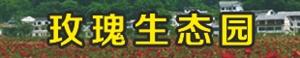 岷县玫瑰生态农业科技开发有限责任公司