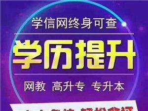 济宁网络教育报名、济宁远程教育报名