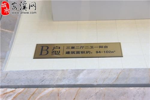 户型B介绍