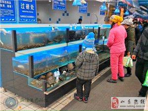 酒店海鲜池鱼缸制作、卖场活鲜鱼缸制作、家装观赏鱼缸