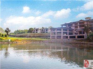 重慶市璧山區《璧甸山鄉》1100畝山水田園項目招商
