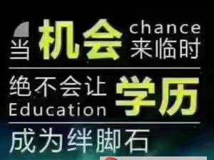 成人高考/遠程教育大專本科,資格證培訓等