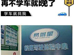 【成县】易驾星模拟驾驶体验中心