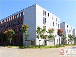 武汉神龙汽车旁10亩钢构车间综合楼6727m2出售