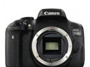 买手表,买单反相机,买新款单反相机