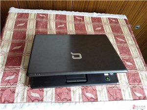 原装惠普笔记本电脑600元出售